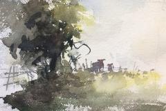 Hazy Cows
