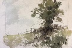 Landscape Study #2
