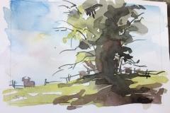 Landscape Study #3